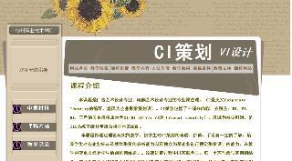 CI策划-VI设计
