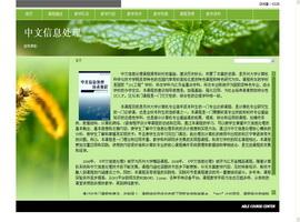 中文信息处理