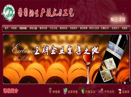 葡萄酒生产技术与工艺