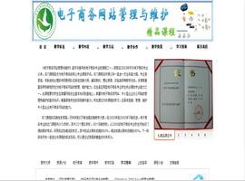 电子商务网站管理与维护