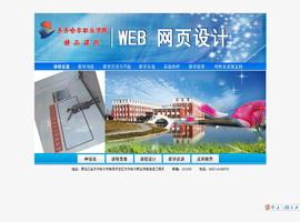 WEB网页设计