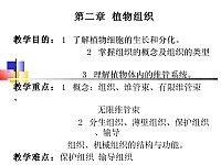森林植物学_杜凤国_第二章植物组织