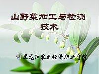 山特产品加工与检测技术_李凤玉_山野菜