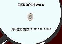 兽医寄生虫学_索勋_生活史动画演示室马圆线虫生活 ...