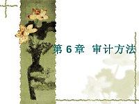 第6章审计方法_辛金国_审计学